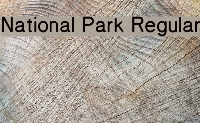 National Park Regular Font examples