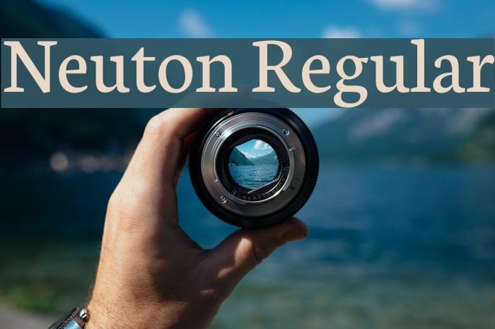 Neuton Regular Font examples