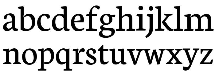 Neuton Regular Font LOWERCASE