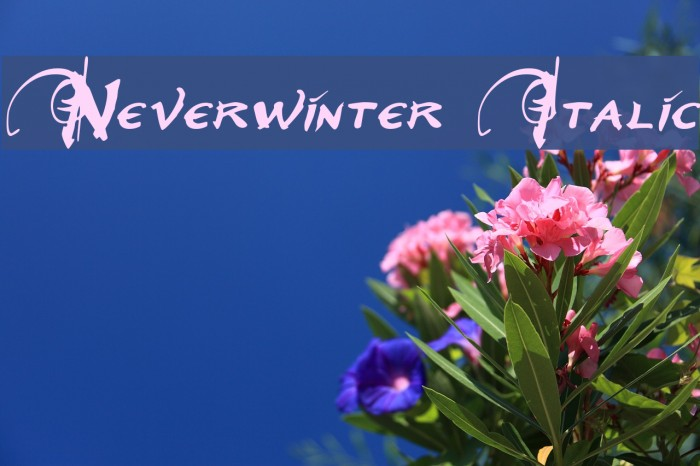 Neverwinter Italic फ़ॉन्ट examples