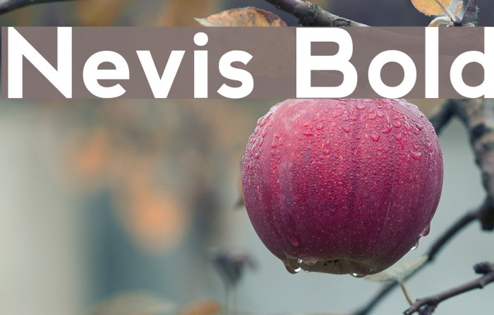 Nevis Bold Font examples