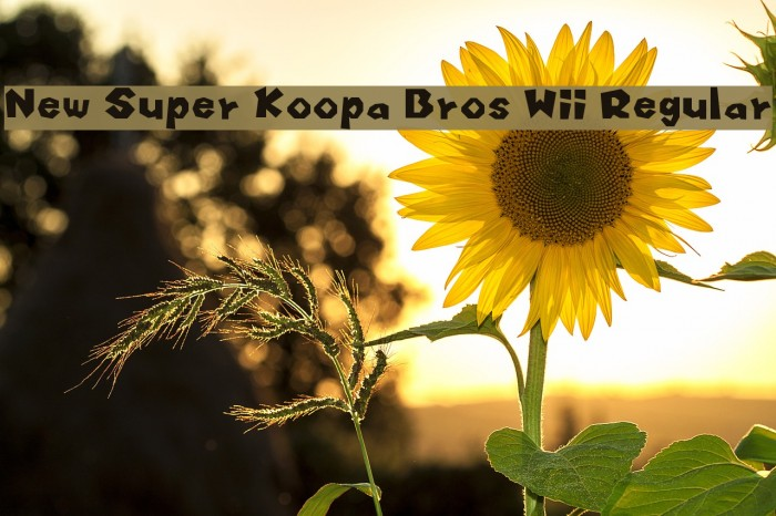 New Super Koopa Bros Wii Regular Font examples