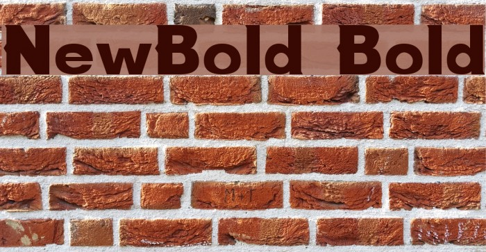 NewBold Bold Fonte examples