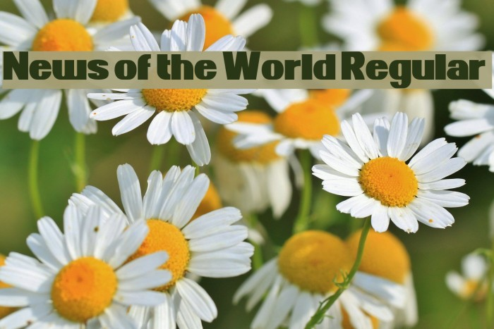News of the World Regular Fonte examples