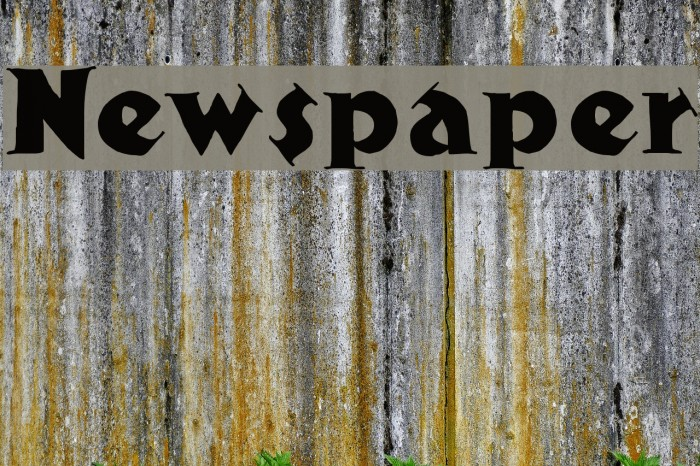 Newspaper Font examples