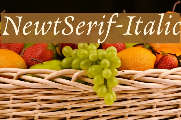 NewtSerif-Italic Fonte examples