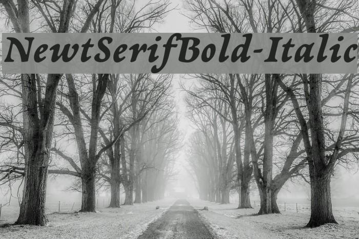 NewtSerifBold-Italic Fonte examples