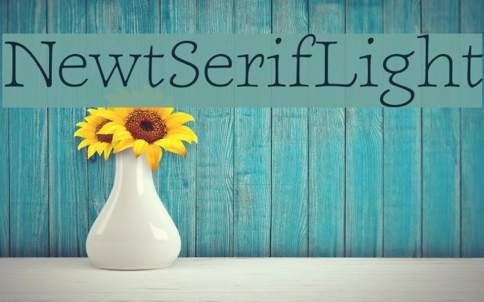 NewtSerifLight Fonte examples