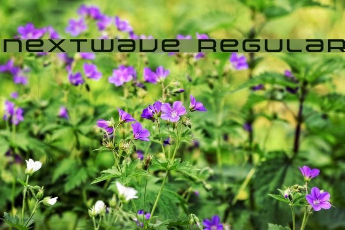 Nextwave Regular Шрифта examples