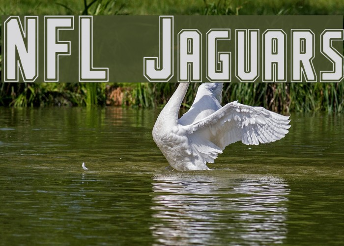 NFL Jaguars フォント examples