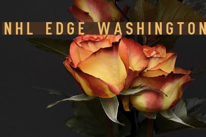 NHL Edge Washington Polices examples