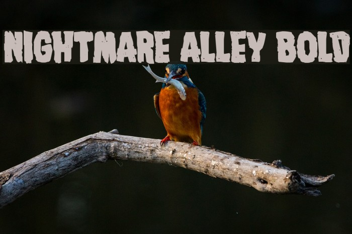 Nightmare Alley Bold Font examples