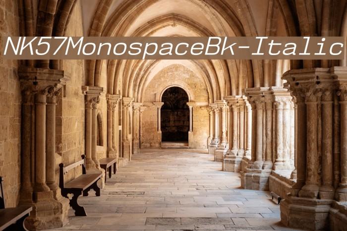 NK57MonospaceBk-Italic Font examples