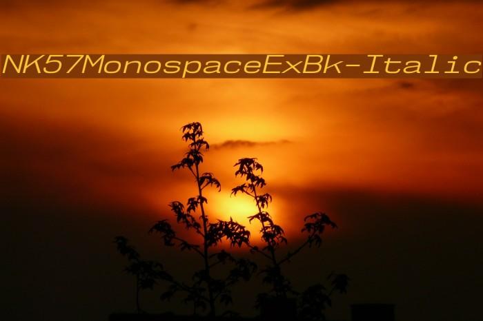 NK57MonospaceExBk-Italic Font examples