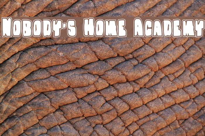 Nobody's Home Academy Font examples