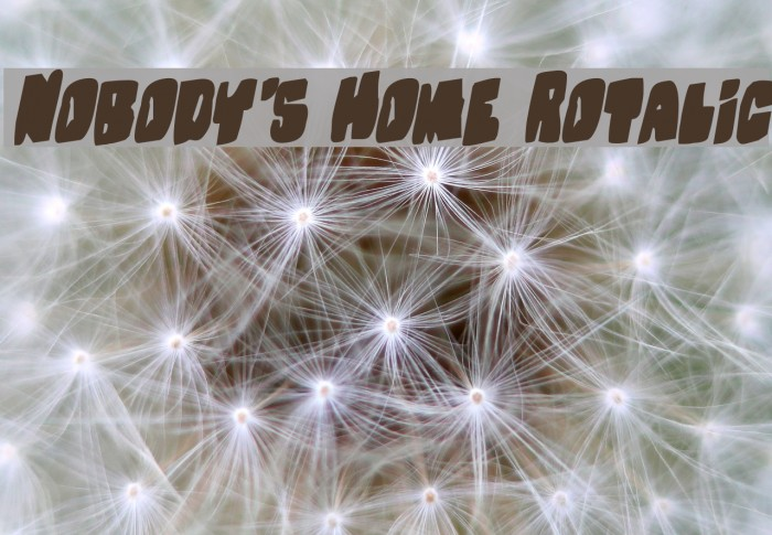 Nobody's Home Rotalic Fonte examples