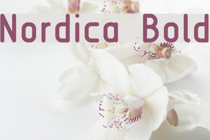 Nordica  Bold Font examples