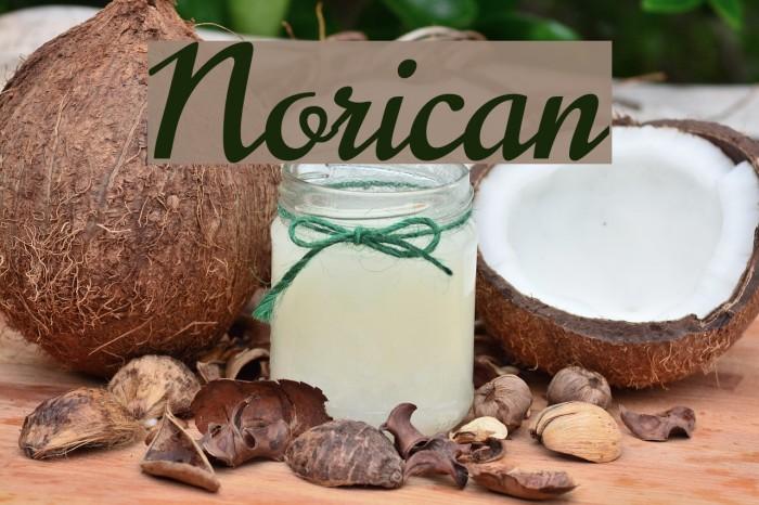 Norican Fonte examples