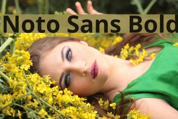 Noto Sans Bold Font examples