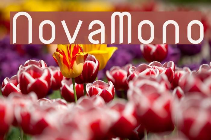 NovaMono Font examples