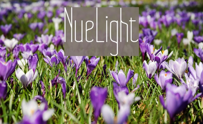 NueLight Font examples