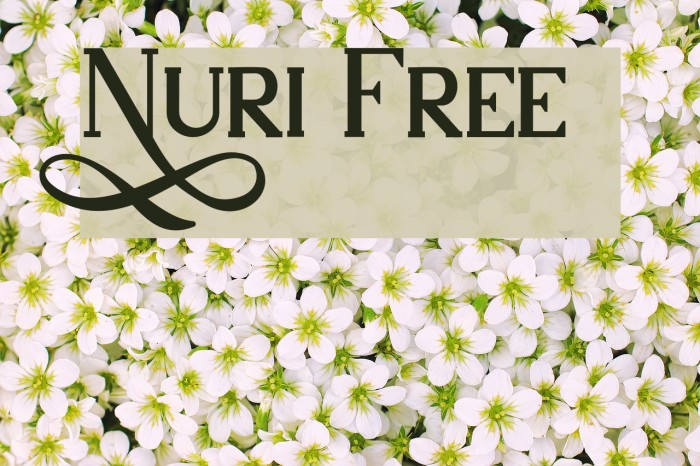 Nuri Free フォント examples