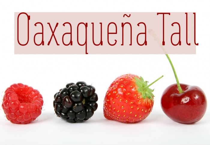 Oaxaque�a Tall फ़ॉन्ट examples