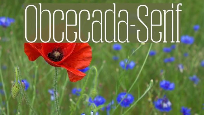 Obcecada-Serif फ़ॉन्ट examples