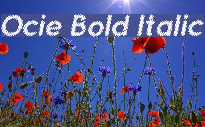 Ocie Bold Italic Polices examples