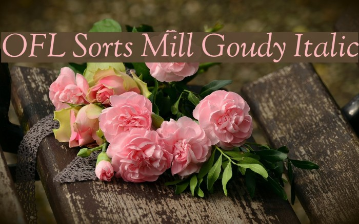 OFL Sorts Mill Goudy Italic Font examples