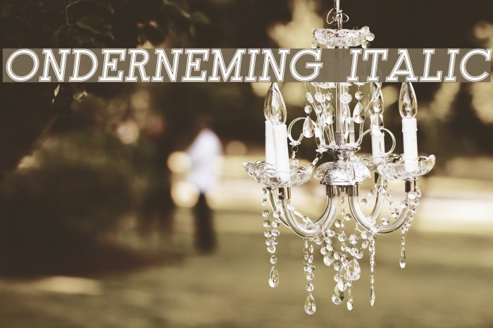 Onderneming Italic Font examples