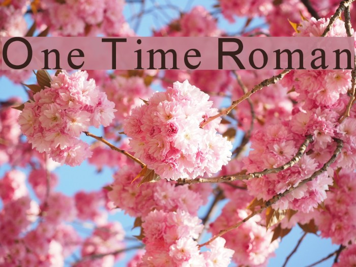 One Time Roman 字体 examples