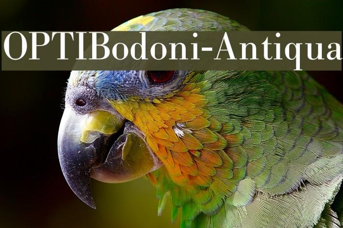 OPTIBodoni-Antiqua Font examples