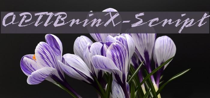 OPTIBrinX-Script Шрифта examples
