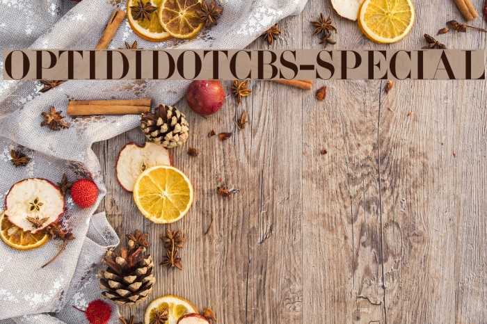OPTIDidotCBS-Special Font examples