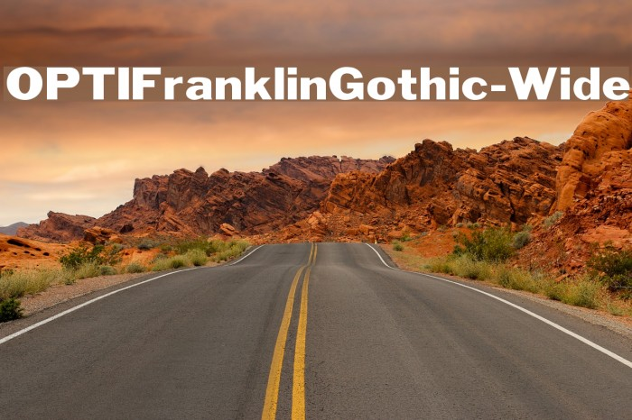 OPTIFranklinGothic-Wide फ़ॉन्ट examples
