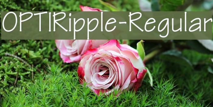 OPTIRipple-Regular Font examples