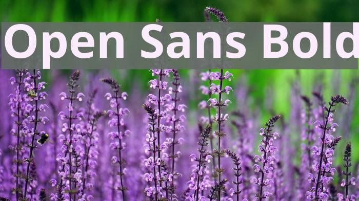 Open Sans Bold Font examples