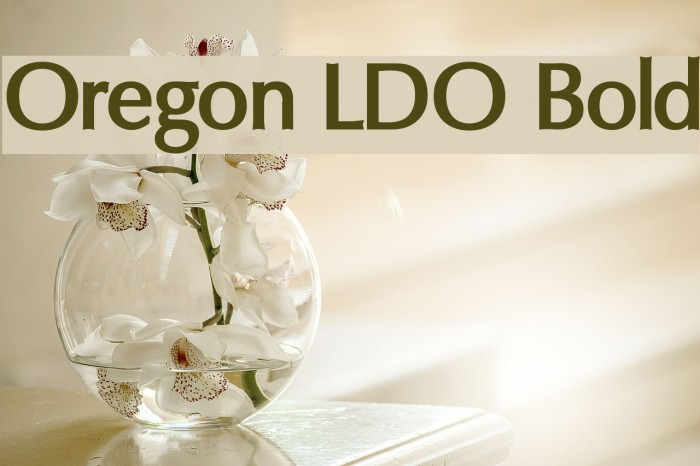 Oregon LDO Bold Fonte examples