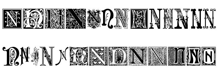 Ornamental Initials N Font UPPERCASE