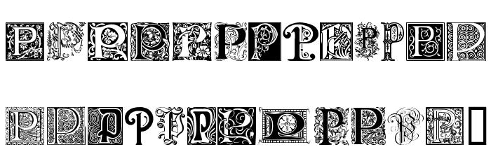 Ornamental Initials P Font UPPERCASE