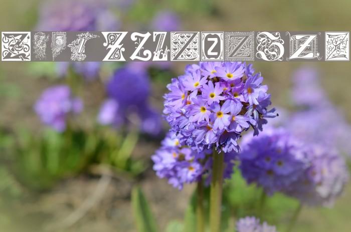 Ornamental Initials Z Font examples