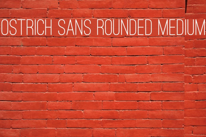 Ostrich Sans Rounded Medium Font examples