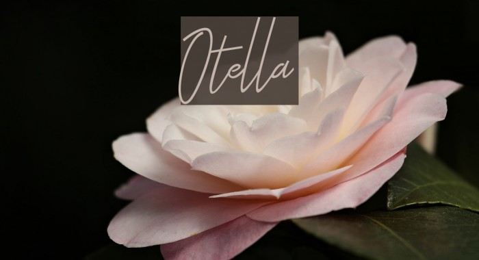 Otella Font examples