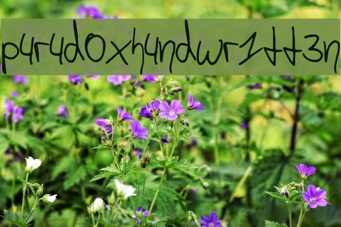 p4r4d0x_h4ndwr1tt3n Schriftart examples