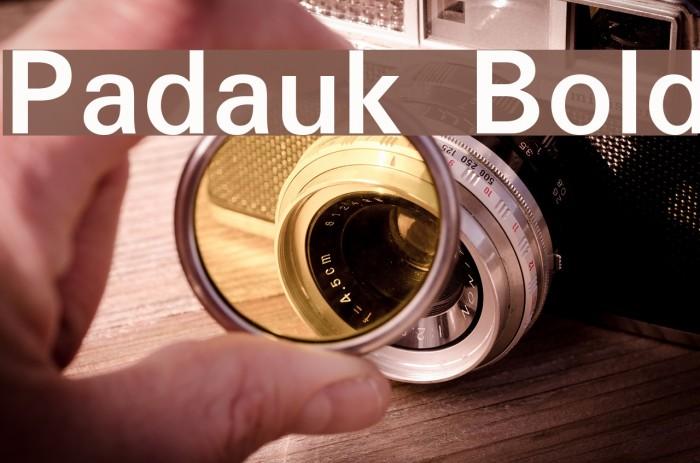 Padauk Bold Font examples