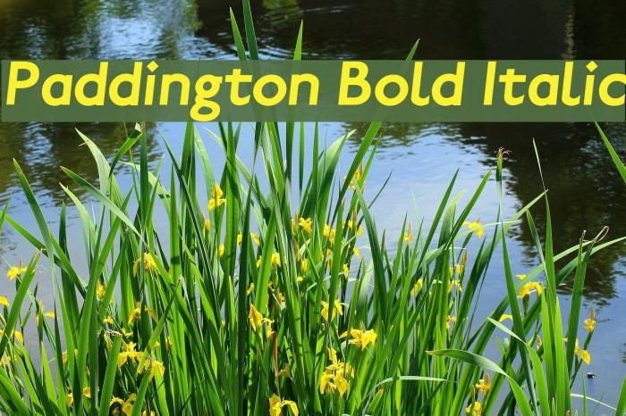 Paddington Bold Italic لخطوط تنزيل examples