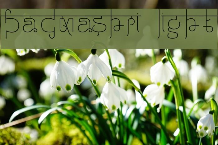 Padmashri Light Font examples