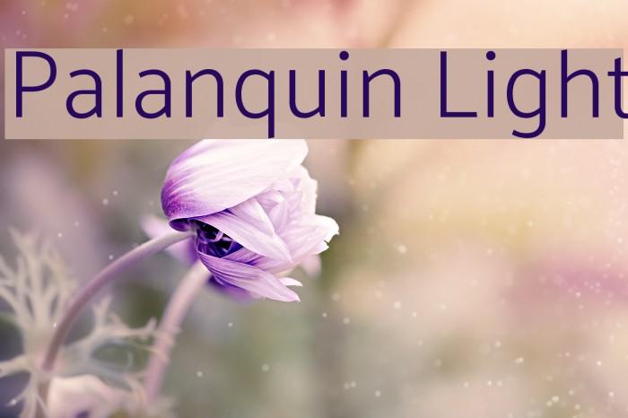 Palanquin Light Font examples