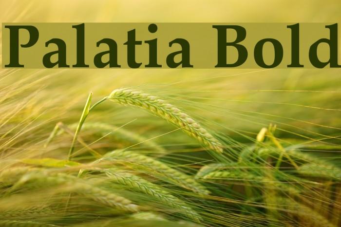 Palatia Bold Font examples